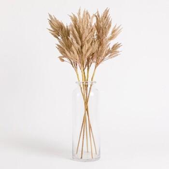 Dried Reed Flower Stem by Habitat