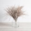 Wheat-Grass-Bush-by-Rogue Sale