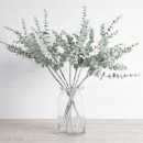 Frosted-Eucalyptus-Stem-by-MUSE Sale