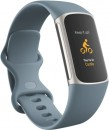 Fitbit-Charge-5-Steel-Blue Sale