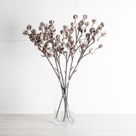 Cotton-Branch-Stem-by-Habitat on sale