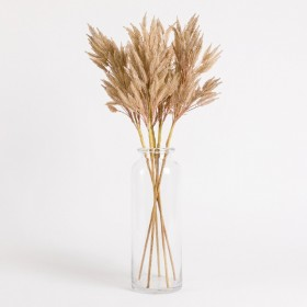 Dried-Reed-Flower-Stem-by-Habitat on sale