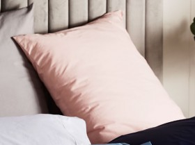 House-Home-250-Thread-Count-Cotton-Rich-Euro-Pillow-Case on sale