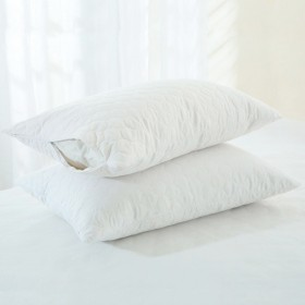 Cotton-Pillow-Protector-by-Cotton-Select on sale