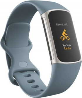 Fitbit-Charge-5-Steel-Blue on sale
