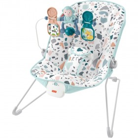Fisher-Price-Babys-Bouncer on sale