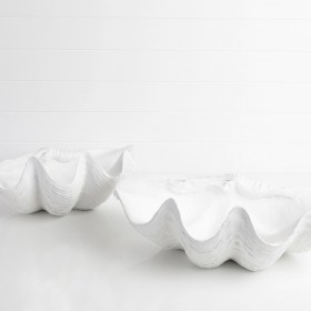 Giant-Clam-Shell-by-MUSE on sale