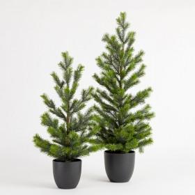 Mini-Potted-Evergreen-Christmas-Tree-by-Habitat on sale