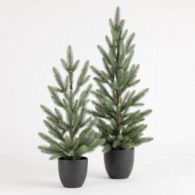 Mini-Potted-Aspen-Christmas-Tree-by-Habitat on sale