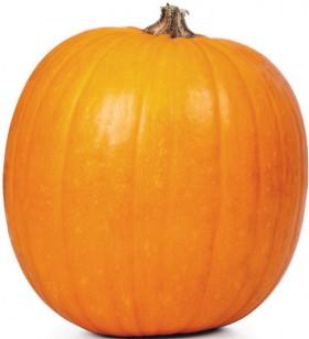Australian-Halloween-Pumpkin on sale